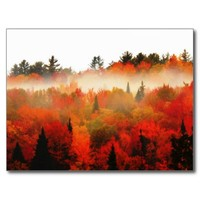 High Peaks Adirondacks Autumn Mountains Forest