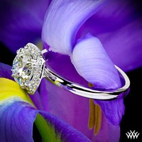 "Style photo of ""Guinevere"" Solitaire Engagement Ring 