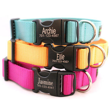 Engraved Personalized Webbing Dog Collar 18 by shopmimigreen