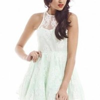 Contrast Lace Kick Out Skater Lime Dress