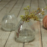 Urchin Etched Glass Vase