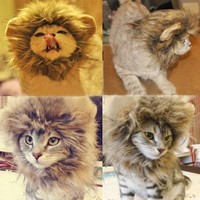 Generic Pet Costume Lion Mane Wig for Cat Christmas Xmas Santa Halloween Clothes Festival Fancy Dress up (Black, M)