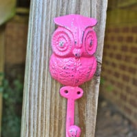 Whimsical Bright Pink Owl Wall Hook by AquaXpressions