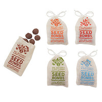 WILDFLOWER SEED BOMBS - SET OF 2 | Flower Seed Kits, Guerilla Gardening | UncommonGoods