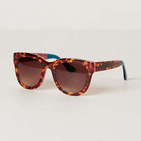 Tropical Tort Sunglasses