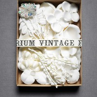 Vintage Flora Kit in  the SHOP Decor Decorating at BHLDN