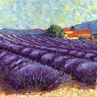 Lavender Fields II Art Print by Lorraine Westwood at Art.com
