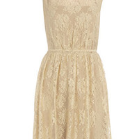 Cream lace panel dress - Sale - Clothing - Dorothy Perkins