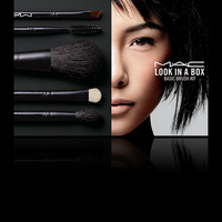 M·A·C Cosmetics | Products > Brush Kits and Bags > Look in a Box: Basic Brush Kit