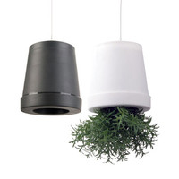 Upsadaisy Hanging Planter - Set of 2