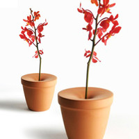 Solo Flower Pot - Set of 2