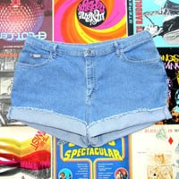 High Waisted Denim Shorts - Vintage 90s Classic Stone Washed STRETCH Jean Shorts, Frayed/Rolled Up/Cuffed Shorts by Riders Plus Size 20 22