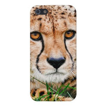 Cheetah iPhone 5/5S Case