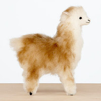 Mini Alpaca | Decorative Accessories| Home Decor | World Market