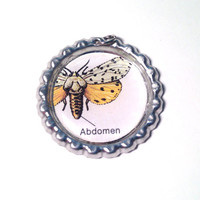 Moth Abdomen Bottle Cap Pendant