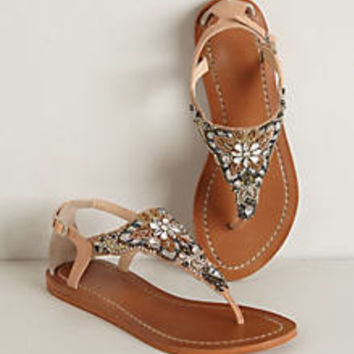 Madagascar Sandals
