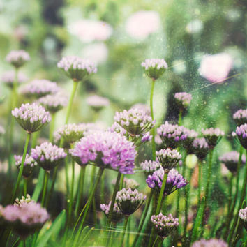 Purple Lilac Dreamy Flowers Photographic Print, Shabby Chic, Photography, Nature Art, Retro, Vintage Summer, Whimsical,Purple, F