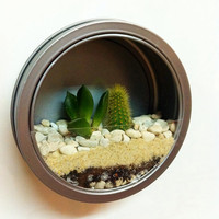 $9.70 Fridge Magnet Terrarium by shopvixiv on Etsy
