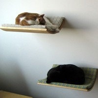 Curve Pet Bed - Browse All - Yanko Design