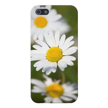 Beautiful Oxeye Daisy iPhone 5/5S Case