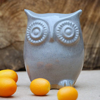 Owl home decor  blue spotted gray by claylicious on Etsy