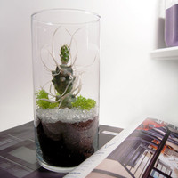 Specimen on Ice Terrarium by wendiland on Etsy