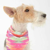 Bianca Green For DENY Ancient Star Pet Bandana - Urban Outfitters