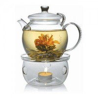 Dream Gift Set: Teapot, Warmer and Blooming Teas by Teaposy | Blooming tea