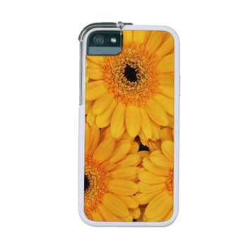 Blooming Gerbera Flowers and Petals - Yellow