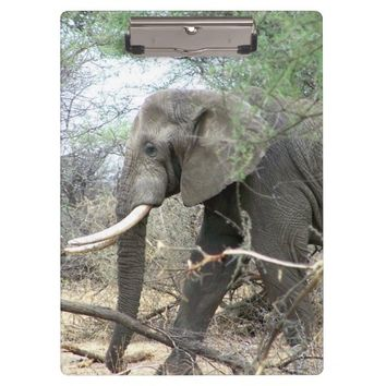 Elephant Clipboard