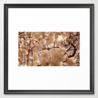 Cherry Blossom Framed Art Print by Vin Hill | Society6