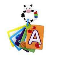 Baby Einstein Animal Discovery Traditional Flashcards