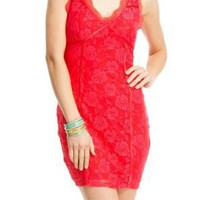 2b Fitted Color Lace Dress