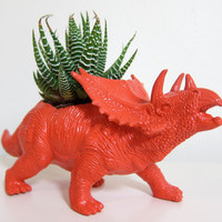 Dinosaur Planter by Plaid Pigeon via Etsy