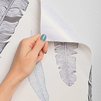 Grey Goose Feather Removable Wallpaper