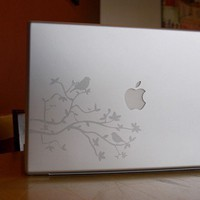 Silver Etched Glass Birds and Branches Laptop / by lewasdesigns