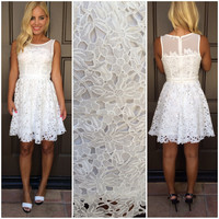 White As Snow Crochet Lace Dress - WHITE