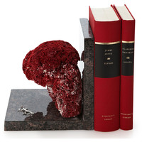 Pipe Coral Bookend w/ Sterling Silver,