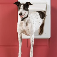 PetSafe SmartDoor - Only opens for tagged pets