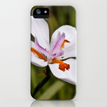Water Lily iPhone & iPod Case by Legends of Darkness Photography