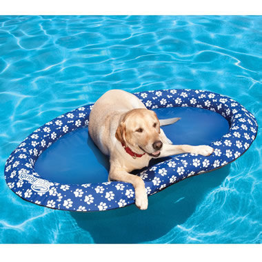 The Canine Pool Float - Hammacher Schlemmer