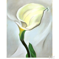 Calla Lily Turned Away, 1923 Art Print by Georgia O'Keeffe at Art.com
