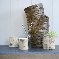 Rowen & Wren - Glass Lined Bray Birch