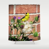 American Goldfinch Shower Curtain by minx267