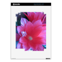 Christmas Cactus Flowers Skins For The iPad 2