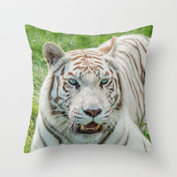 THE BEAUTY OF WHITE TIGERS Throw Pillow by Catspaws   Society6