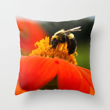bumblebee orange flower pillow home decor cushion fine art photography botanical floral macro living room bedroom furnishing summer