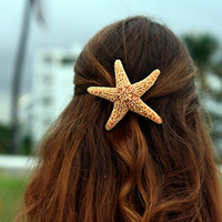 Sugar Starfish Barrette- Large