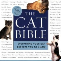 The Cat Bible: Everything Your Cat Expects You to Know:Amazon:Books
