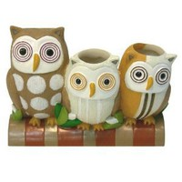 Amazon.com: Allure Home Creations Hoot Toothbrush Holder: Home & Garden
